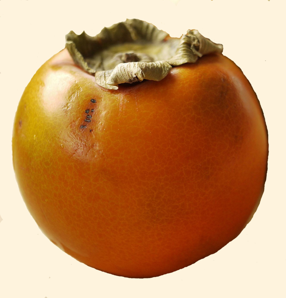 Diospyros kaki (frukt) 870_picnik